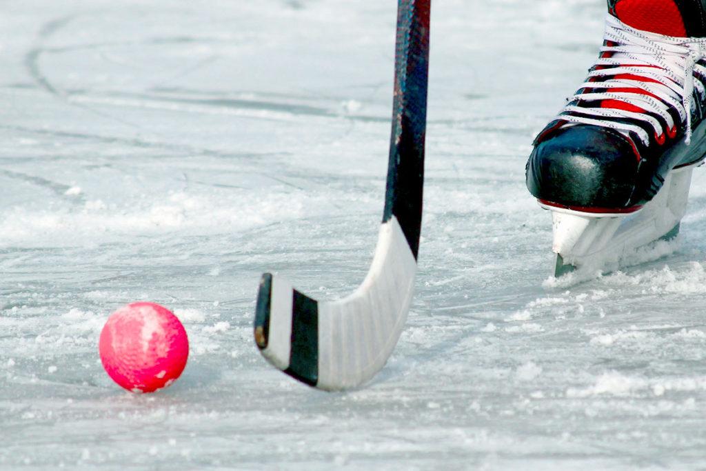В Иркутске 9 апреля стартует финал всероссийских соревнований по хоккею с мячом среди юношей 2005-2006 годов рождения