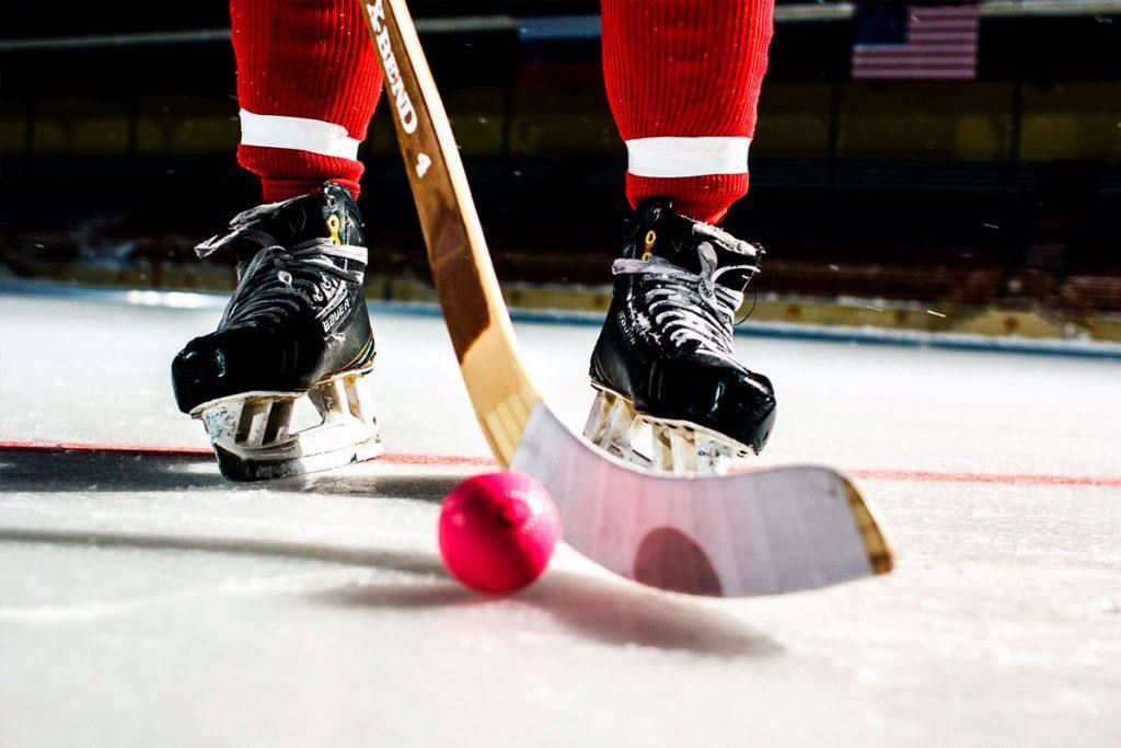 В Иркутской области базовым видом спорта стал хоккей с мячом