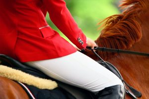 С 21 по 25 июня в Иркутском районе пройдёт IV Международный Байкальский фестиваль конного спорта среди инвалидов