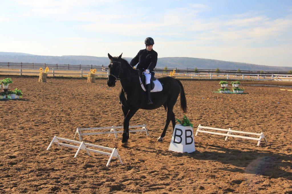 Победители чемпионата и первенства области по адаптивному конному спорту определены в Приангарье